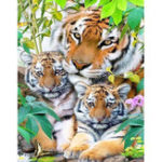New DIY Diamond Painting Lovely 3 Tigers Cross Stitch Crystal Square Diamond Sets Needlework Crafts