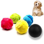 New 4Pcs/Set Magic Roller Ball Toy Automatic Roller Ball Pet Cat Dog Toys Hunting Dog Supplies