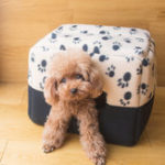 New Warm Dog Bed Soft Fleece Pet Dog Puppy Cat Beds For Small Dogs Plush Cozy Nest Mat Winter Pet Supplies