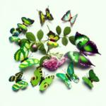 New 12PCS/Set PVC Green 3D Butterfly Wall Sticker Home Decor Living Room DIY Design Wall Decals