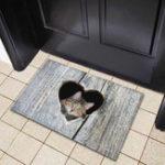 New Door Mat Cartoon Cute Cat Kitchen Rugs Bedroom Carpets Living Room Floor Mat