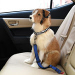 New Dog Retractable Leopard Car Seat Belt Safety Rope Puppy Seat Belt Leashes Universal