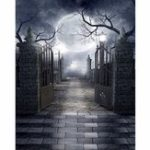 New 5x7FT Halloween Grave Gate Photography Backdrop Background Studio Prop