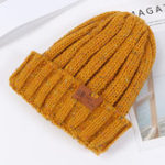 New Women Double-layer Fleece Lining Rolled Cuff Warm Knit Hat
