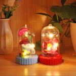 New Beauty and the Beast Battery Powered LED Rose Bottle Night Light String Light Desk Lamp Romantic Valentine's Day Birthday Gift