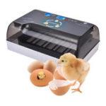 New 110/220V Intelligent Egg Incubator Digital Fully Automatic Hatching Incubator 12 Position