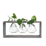 New  Wood and Glass Creative Hydroponic Living Room Decoration Flower Pot Plant Vase