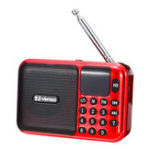 New 5V 3W Portable USB Radio FM MP3 Memory Card U-disk Speaker Player
