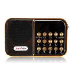 New DC 5V 3W Portable USB FM Radio Speaker FLAC WAV MP3 Player