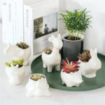 New Ceramic Succulent Plant Container Flower Pot Planter Holder Vase Animal Shape Decorations
