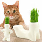 New T-shaped Ceramic Art Creative Rye Cat Grass with Cat Grass Seed