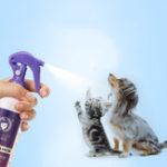New Pet Disposable Care Liquid Solution 300ml Pet Dog Cat Shower Gel Dry Bath Power Care Health