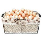 New Metal Wire Fruit Egg Baskets Kitchen Garden Wedding Decorations Storage Case