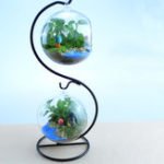 New Creative Flower Pot Glass Ball Vase Terrarium Home Room Decor Gift