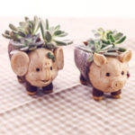 New ChowDon Novelty Cute Animal Resin Ornament Unique Succulent Plant Flower Pot Planter
