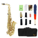 New SLADE LD-896 E-flat Brass Pipe Alto Saxophone with Bag Clean Tools