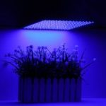 New 225LED Grow Light Blue Lamp Ultrathin Panel Hydroponics Indoor Plant Veg Flower AC85-265V
