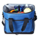 New Waterproof 16L Insulated Thermal Shoulder Picnic Cooler Lunch Bag Storage Box