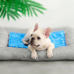 New Pet Cooling Mat From Xiaomi Youpin Water Ripple Blue Long-lasting Heat Dissipation Waterproof Cat Dog Pad