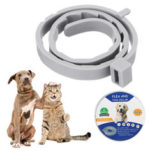 New              Mosquito Repellent Collar Cats Teddy Preventing Flea Ring Anti-lice Pet Collar