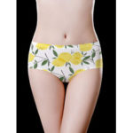 New              Low Waist Floral Printing Seamless Cotton Crotch Briefs