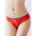 New              Transparent Lace Hollow See Through Low Waist Briefs