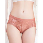 New              Lace Jacquard Mid Waist See Through Briefs
