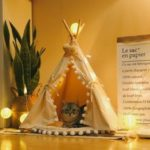 New              Dog Cat Pet Teepee White Tent Portable Washable Sweet House Kids Play Tents S/L