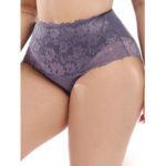 New              Plus Size High Waist Flora Lace Full Hip Briefs
