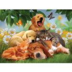 New              Full Drill Dog Cat 5D Diamond Paintings Embroidery DIY Cross Stitch Kit Art Tool Pug