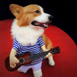 New              Small Large Pet Dog Halloween Costumes Guitar Player Coats Clothes Party Cosplay
