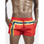 New              Mens Stripe Print Mesh Mesh Lining Pocket Quick Dry Drawstring Board Shorts