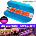 New              30W 50W 100W Full Spectrum COB LED Plant Grow Light Growing Lamp Hydroponic Veg Flower AC220V